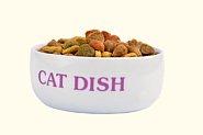 Ceramic cat food bowl