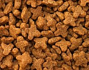 picture of dry cat food