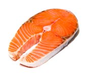 picture of salmon for fresh cat food